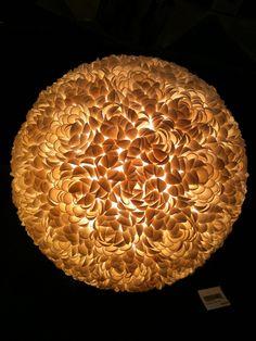 transfixed by the glow from this papaya seashell lamp