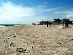 awesome Edisto Beach Island