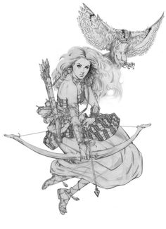 Celaena and Rowan in bird form