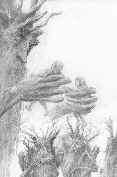 Fangorn; art by Alan Lee