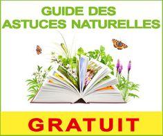 guide gratuit des astuces naturelles: Nettoyer éponge naturelle Diy Crafts, Bons Plans, Guide, Handmade, Trust, Beauty, Hand Made, Craft, Cosmetology