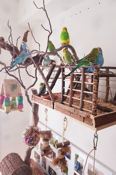LLY Bird Cage Perches Right Angle Wooden Platform Parrot Stand Playground Cage Accessories
