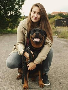 Rottweiler.jpg (720×960)