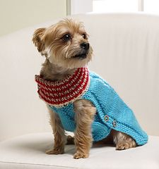 Keep your four-legged friend warm this winter in the Cable Knit Dog Sweater. Stylish and cozy, this DIY dog sweater is great for doggy play dates, strolls through the park, burying bones in the backyard, and catching some Z& on the couch. Knitted Dog Sweater Pattern, Dog Coat Pattern, Knit Dog Sweater, Dog Sweaters, Sweater Knitting Patterns, Free Knitting, Dachshund Sweater, Baby Knitting, Dog Jumpers
