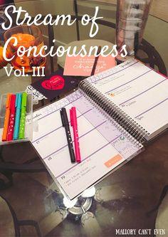 Stream of Conciousness Vol. III #blog #blogging #erincondren #planner