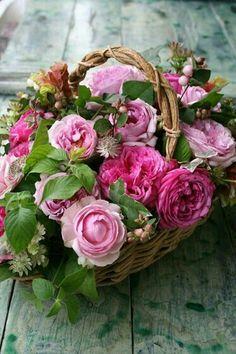 "vintagestoriesandstyle: ""R O S E S "" pink roses ♥ Pretty Flowers, Fresh Flowers, Pink Flowers, Beautiful Flower Arrangements, Floral Arrangements, Ikebana, Deco Floral, Beautiful Roses, Bouquets"