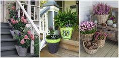 Néhány cserép virág elég ahhoz, hogy minden szomszéd irigykedve pillantson az otthonodra!