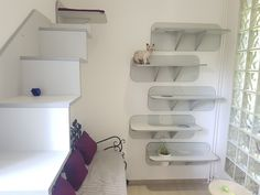 Pokoj 2 - VIP Apartmá Cat Hotel, Toilet Paper, Vip, Luxury, Cats, Gatos, Kitty Cats, Cat Breeds, Kitty