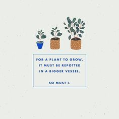 Your body is the vessel and your spirit is forever growing; make sure it can flourish. Love this post by Good night poets! Words Quotes, Wise Words, Me Quotes, Motivational Quotes, Inspirational Quotes, Sayings, Pretty Words, Beautiful Words, Cool Words