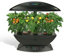 """t anywhere indoors) by suspending plant roots in the air, rather than in soil or water. The suspended plants derive their nutrients from the air, with the help of the """"smart"""" lighting and nutrient-"""