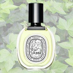 Summer Fragrance: Best Green Perfumes - think moss, green tea, young leaves, clover, and grass. | 7. Eau de Lierre, Diptique ($90).