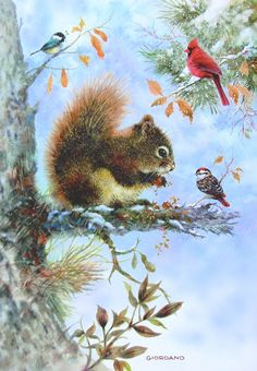 Greg Giordano Squirrel Cardinal Chickadee Birds Tree Branch Snow Christmas Card