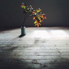 Tine K Home - prosto i pięknie :)