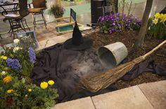 And Elphaba, the Wicked Witch of the West, has melted! What should we do for this coming year? Would love some suggestions from you!