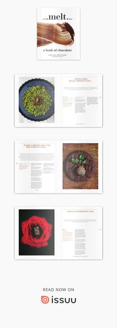 Browse recipes from Melt by Chika Watanabe, Louise Nason Chocolate, Desserts, Recipes, Tailgate Desserts, Deserts, Chocolates, Postres, Dessert