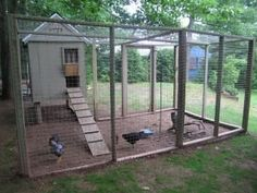 Side view of coop and run - this is the coop I want at some point... #ChickenCoopPlans