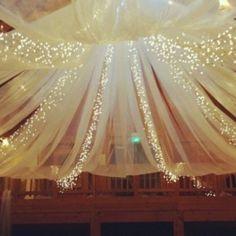 Blue tulle, more lights, less poof--starry night for Vanessa's rainforest room?