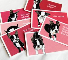 Boston Terrier valentine cards...i want these!