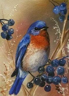 """Daily Paintworks - """"Berry Blue"""" - Original Fine Art for Sale - © Paulie Rollins Bird Pictures, Pictures To Paint, Pretty Birds, Beautiful Birds, Beautiful Pictures, Watercolor Bird, Watercolor Paintings, Bird Paintings On Canvas, Bird Painting Acrylic"""