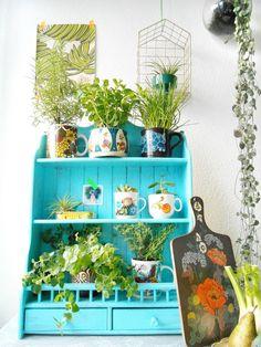 Hipaholic: Urban Jungle Bloggers: Kitchen Greens