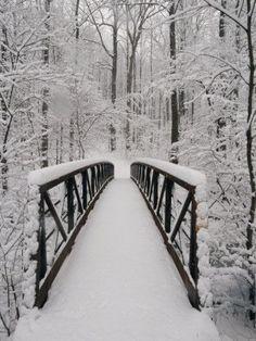 # plowsnow.com # gasaway maintenance # commercial snow management