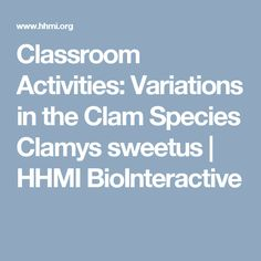 Classroom Activities: Variations in the Clam Species Clamys sweetus | HHMI BioInteractive