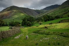 Scotland ^^