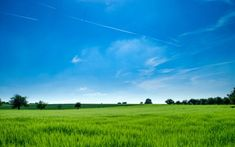 Panoramic Photography of Green Field Background Wallpaper  #computerbackgroundimages #desktopwallpapers #desktopbackgrounds #hdwallpapers