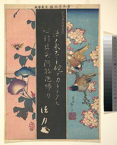 Bird-and-Flower Paintings  Katsushika Hokusai  (Japanese, 1760–1849)  Calligrapher: after Kumagai Naozane (Japanese, 1141–1208) Period: Edo period (1615–1868) Date: ca. 1816–20 Culture: Japan Medium: Polychrome woodblock print; ink and color on paper