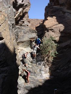 A Day Hiking - Jebel Hatta