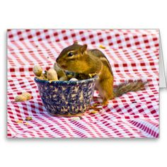 Chipmunk Picnic Greeting Card