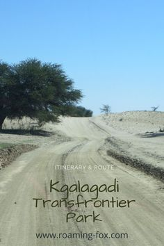 Itinerary and route to Kgalagadi Transfrontier Park. #itinerary #route #southafrica #travel #roadtrip #nationalpark #kgalagaditransfrontierpark #camping #chalets #wildlife #aridpark #selfcatering #accommodation Road Trip Hacks, Road Trips, Wildlife Safari, The Dunes, Travel Articles, Nature Reserve, Africa Travel, Plan Your Trip, South Africa