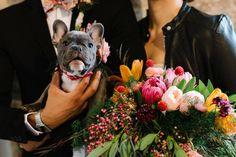 french bulldog // Protea and Tulip Bouquet // Brooklyn Wedding Inspiration // As seen on Green Wedding Shoes // Lindsay Hackney Photography // Lindsey M. Events // Flowers by Gardenia Organic