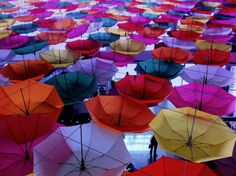 Color Fest by Rahul Tripathi on 500px