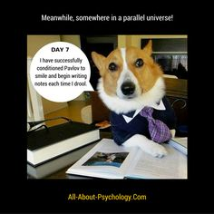 Studying psychology? Visit --> http://www.all-about-psychology.com/ for free information and resources. #psychology
