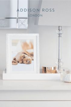 Unsure how to create Instagram worthy photos which capture your dogs personality? We share 9 tips for getting your best doggie photos yet. #addisonross #photographytips #dogphotography Wedding Gifts, Wedding Day, Contemporary Side Tables, Silver Frames, Work With Animals, White Interiors, Family Room Decorating, Jewellery Boxes, Instagram Worthy