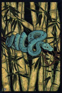 """Green Tree Python"" by Rachel Newling. http://rachelnewling.com/ Tags: Linocut, Cut, Print, Linoleum, Lino, Carving, Block, Woodcut, Helen Elstone, Snake, Animal, Creature, Bamboo."