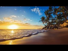 Calm Background Relaxing Music with Ocean and  Bird Sounds - YouTube