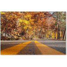 Trademark Fine Art Autumn Road Canvas Art by Kurt Shaffer, Size: 30 x 47, Multicolor
