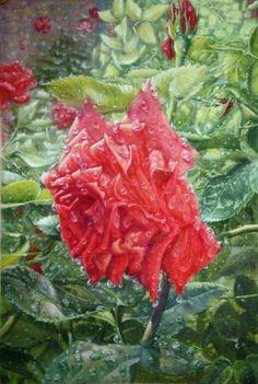 Картина (рисунок): омывается дождем