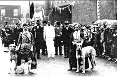 The Tailteann games 1924. Irish Wolfhounds