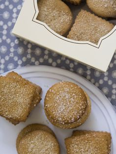 Get this all-star, easy-to-follow Food Network Gingerbread Cookies recipe from Anne Burrell.