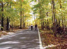 Biking is Awesome, Harbor Springs, Michigan