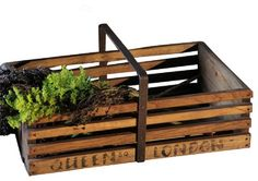 Queen Square Orchard Crate - traditional - storage boxes - by BoBo Intriguing Objects