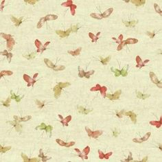 |Ashford House Wallpaper| Butterflies $25.75 #yellow #spring