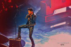 Queen Cologen 21.01.2015 - Adam Lambert by Nicole Frischlich Art Photography NIFRI on 500px