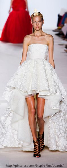 Couture Fall 2013 - Giambattista Valli