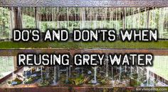 DO's And DON'Ts When Reusing Grey Water