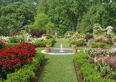 Jardim das Rosas no Morris Arboretum da Universidade da Pennsylvania. Filadélfia, Pennsylvania, USA.