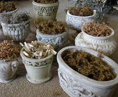 Cosas Bellas ~ little planters